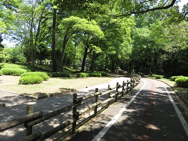 ぐんまの森サイクリングロード