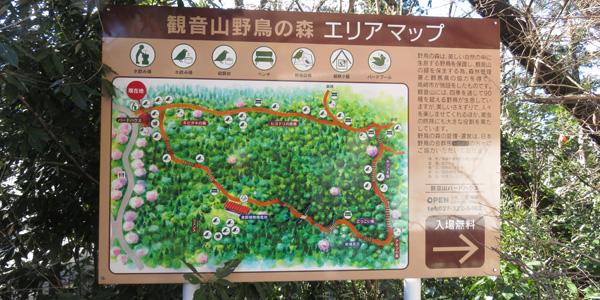 観音山野鳥の森エリアマップ