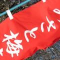 みさと梅祭りの旗